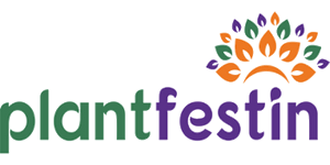 plantfestin - Clienti.